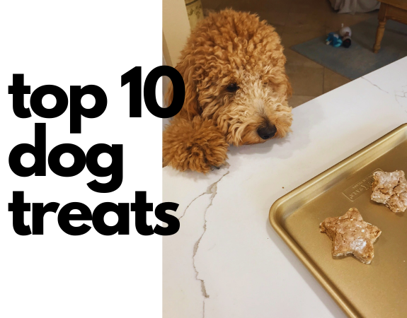 Best Dog Treats: My Top 10 Picks for Dog Chews and Treats